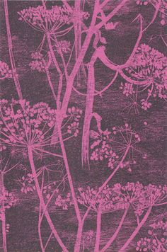 Cole & Son - New Contemporary - Cow Parsley 66-7047 HR Too hot pink?