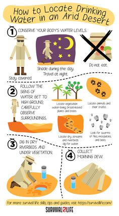 Make sure you survive the desert and don't dry of dehydration with this survival tips! #drinkingwater #desertsurvival #waterinadesert #survivalskills #prepperskills #survival #preparedness #survivallife Survival Blog, Survival Life, Survival Prepping, Emergency Preparedness, Survival Skills, Wow Facts, Charts And Graphs, Outdoor Survival, Drinking Water