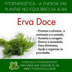 Erva-doce. A Kind Of Magic, Medicinal Herbs, Alternative Medicine, Magick, Food Hacks, Reiki, Home Remedies, Health And Beauty, Herbalism