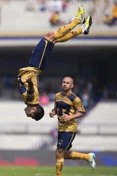 De cabeza. #Pumas #LuisFuentes