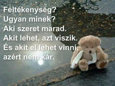 Love Life, Buddhism, Einstein, Life Quotes, Spirituality, Teddy Bear, Wisdom, Humor, Attila