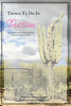 Things-To-Do-Tucson-AZ-Travel.png