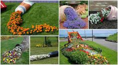 15 Poured flower beds ideas