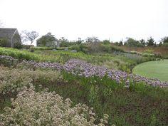 james corner field operations - New York - Landscape Architects Lush Garden, Dream Garden, Garden Art, Garden Design, New York Landscape, Landscape Architecture, Landscape Design, Formal Gardens, Outdoor Gardens