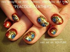PEACOCK feather inspired designs  robin moses nails art tutorial 2