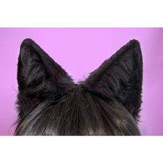Black Faux Fur Wolf or Large Cat Ears ($35) ❤ liked on Polyvore featuring accessories, hair accessories, costumes, cosplay, animals, headband hair accessories, cat ears headband, faux fur headband, thin headbands and head wrap headband