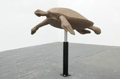 Frank Benson - Turtle (Bronze), 2004-2009  Bronze, painted stainless steel, acrylic polyurethane paint  36 x 36 x 19 in