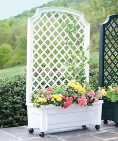 Calypso Self Watering Planter With Trellis And Wheels Various