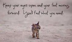 Keep your eyes open..