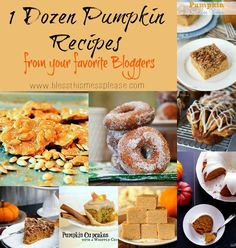 One Dozen Amazing Pumpkin Recipes - a collection from some of my favorite bloggers so you know they are going to be keepers! Enjoy...