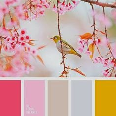 color palette from In Color Balance Bedroom Colour Palette, Colour Pallette, Color Palate, Colour Schemes, Color Combos, Color Patterns, Bright Bedroom Colors, Bright Colors, Spring Color Palette