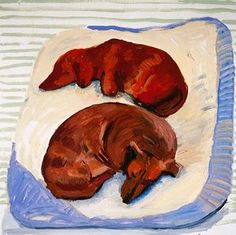Fur sleepers … David Hockney's Dog Days (Thames & Hudson) £7.95.