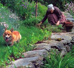 Tasha Tudor and corgi in the garden. Love the rock path,ledge.