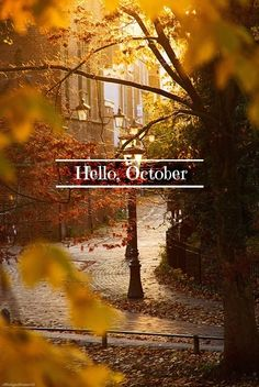 Hello, October. I have missed you so...Lets walk hand in hand for awhile. -D