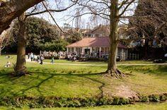 eat @ The Park Café, Hastings Alexandra Park, No Cook Meals, Eat, Plants, Kids, Young Children, Boys, Children, Kid
