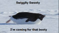 Swiggity Swooty Im Comin For That Booty Check out all our blank memes. swiggity swooty im comin for that booty