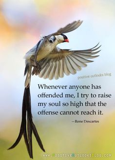 Whenever anyone has offended me, I try to raise my soul so high that the offense cannot reach it. — Rene Descartes
