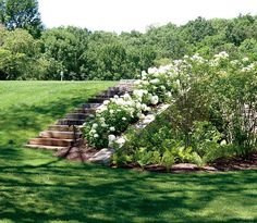 Image result for Eye catching front yard slope