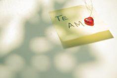 Si has estado viviendo en una cueva o si no deseas estar viviendo en la caseta del perro el resto de la semana, ten en cuenta que mañana es el Día de San Valentín, conocido también como el Día del Amor y la Amistad.  Lea más de Un Recordatorio Final del Día de San Valentín en https://wp.me/p1r4pi-6Id  Publicado por Comunión de Gracia Internacional en #Notas_de_Amor_para_Parejas #Día_Del_Amor, #San_Valentin   Comunión de Gracia Internacional Viviendo y Compar