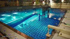 Fukushima cooling pumps back online... tsunami warnings fade... world barely dodges another global-killing bullet