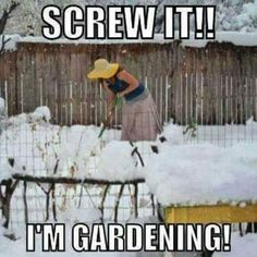 When you just can't hide the feeling to get out and turn your soil. Your really frozen soil. Haha
