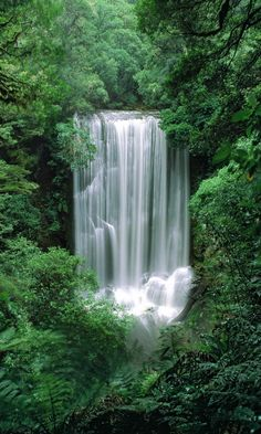 Amazing Places to Visit - Korokoro Falls, Te Urewera National Park, NZ Beautiful Waterfalls, Beautiful Landscapes, Beautiful World, Beautiful Places, Beautiful Wife, Amazing Places, Places Around The World, Around The Worlds, Belleza Natural