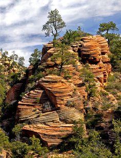 Zion National Park View Photograph - Zion National Park View Fine Art Print