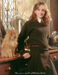 """Poor Crookshanks.  That witch said he'd been in the shop for ages.  No one wanted him."" - Hermione"
