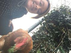 Chicken selfie