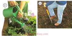21. water the plants 22. dig the soil Photo Dictionary, Dictionary For Kids, Yard Waste, Electrical Tape, Grass Seed, Gardening Gloves, Flower Beds, Daffodils, Compost