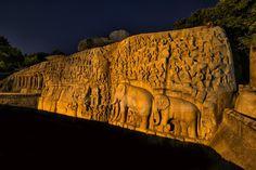 Koplampen en olifanten