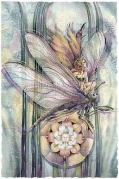 Dragon Rider - The Greatest Success Is To Live In Your Own Way by Jody Bergsma Print Fantasy Kunst, Fantasy Art, Elfen Fantasy, Fairy Pictures, Happy Birthday Greeting Card, Dragon Rider, Beautiful Fairies, Flower Fairies, Fairy Land