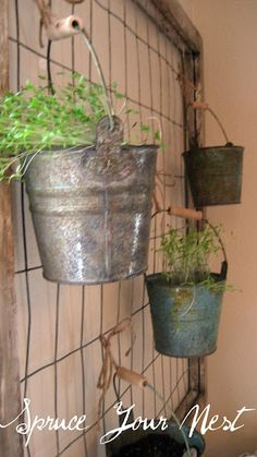 I have seen herb garden stuff in the kitchen but this one is the one I want to do.