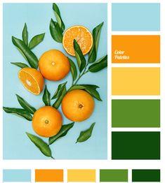 Orange, Tropical, Color Palette, Green, Blue, Yellow, Bright, Summer, Spring Orange Color Palettes, Bright Color Schemes, Green Colour Palette, Spring Color Palette, Bright Colors, Green Paint Colors, Kitchen Paint Colors, Bathroom Colors, Mint Bathroom