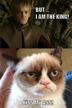 Game of Thrones & Grumpy Cat