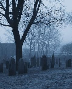 To Do: a graveyard in Salem, MA.