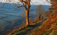 A Torrington Commons walk in autumn