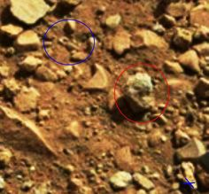 LOST KEY and DRAGON FOSSIL : Mars : NASA's  Curiosity discovery