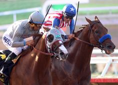 California Chrome (Lucky Pulpit) returned to trainer Art Sherman's Los Alamitos base Sunday, a day after his thrilling victory over Dortmund (Big Brown) in the GII San Diego H.