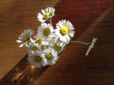 @nllihor - Cadeautje van de kleine vriendinnetjes. #stippen #synchroonkijken