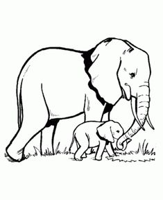 online baby elephant coloring page a fun method of coloring - Cute Baby Elephant Coloring Pages