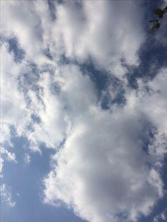 2017년 11월 14일의 하늘 #sky #cloud
