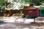 Emerald Forest Cabins | Redwood National Park | National Park Reservations