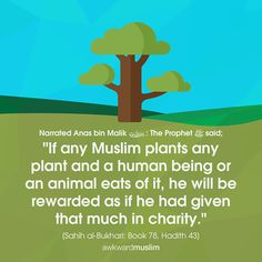 Easy way to gain Allah's blessings