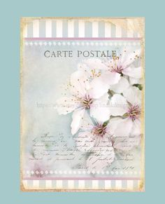 Cherry Blossoms Printable Collage Sheet Instant by lindakdesign, $5.00