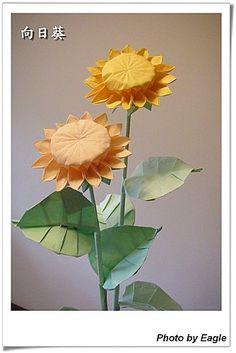 Орел Оригами: Оригами подсолнечника учение ядро 16 крупных цветочных лепестков