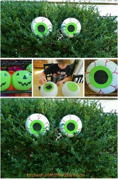 Spooky Bush Eyes ..... If you are looking for a fun and easy idea for sprucing up your yard for trick-or-treaters, one great project is these spooky bush eyes! They are, believe it or not, made out of repurposed and repainted plastic jack-o-lanterns.