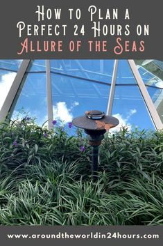 So you want a perfect 24 hours of the best things to do on Allure of the Seas? Find out exactly what to do on one of the biggest cruise ships in the world! #royalcaribbean #allureoftheseas