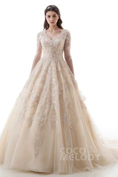 Luxurious Princess V-Neck Natural Court Train Lace and Tulle Champagne Long Sleeve Zipper With Buttons Wedding Dress with Appliques LD4622