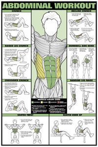 Abdominal Workout Wall Chart Mens Professional Fitness Poster